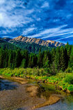 A Wilderness Setting Royalty Free Stock Images