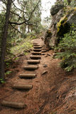 Wilderness Staircase royalty free stock images