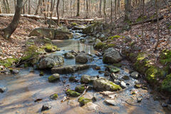 Wilderness stream filled with rocks Royalty Free Stock Photo