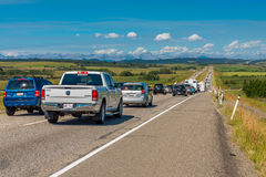 Wilderness Traffic Jam. Just north of Calgary on Royal Hwy 1 Alberta, Canada Royalty Free Stock Images