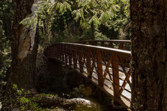 Wilderness trail bridge Stock Image