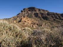 Wilderness. Volcanic landscape - mountain range - desert - blue sky - bushes - no people Stock Images