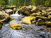 Wilderness of Vydra river Stock Photos