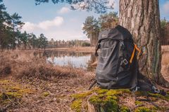 Wilderness, Water, Nature Reserve, Tree Royalty Free Stock Image
