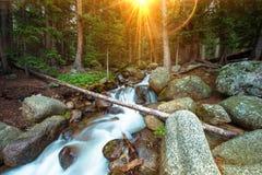 Wilderness Waterfalls Stock Image