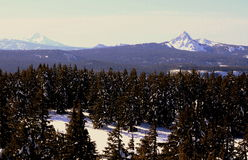 Wilderness Winter Scenery Stock Photography