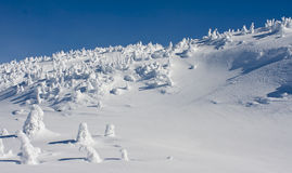 Wilderness Winter Terrain. High alpine scenery showing windswept snow across rocky mountain top Royalty Free Stock Images