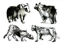 Wildernis en tijger en dier en luipaard Royalty-vrije Stock Foto
