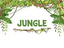 Wildernis exotische bladeren en lianes vectorachtergrond stock illustratie