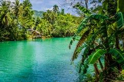 Wildernis groene rivier Loboc bij Bohol-Eiland Filippijnen Bamboehut onder palmen, Bohol, Filippijnen Royalty-vrije Stock Afbeeldingen