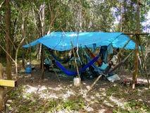 Wilderniskampeerterrein onder Regen Forest Canopy in Amazonië stock afbeeldingen