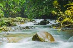 Wildernislandschap in Thailand Royalty-vrije Stock Fotografie