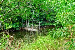 Wildernisrivier met weinig houten pijler op het in Kambodja kampot royalty-vrije stock afbeeldingen