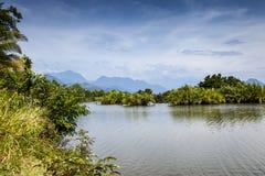 Wildes djungle in Aceh, Indonesien Lizenzfreies Stockbild