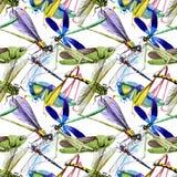 Wildes Insekt der exotischen Grillen in einem Aquarellartmuster Stockfotografie