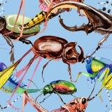 Wildes Insekt der exotischen Grillen in einem Aquarellartmuster Stockfoto