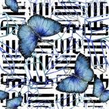 Wildes Insekt der exotischen Schmetterlinge in einer Aquarellart Nahtloses Hintergrundmuster vektor abbildung