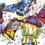 Wildes Insekt der seltenen Schmetterlinge in einer Aquarellart Nahtloses Hintergrundmuster Gewebetapeten-Druckbeschaffenheit Lizenzfreies Stockbild