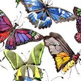 Wildes Insekt der seltenen Schmetterlinge in einer Aquarellart Nahtloses Hintergrundmuster Gewebetapeten-Druckbeschaffenheit Lizenzfreie Stockfotos