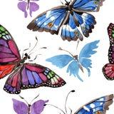 Wildes Insekt der seltenen Schmetterlinge in einer Aquarellart Nahtloses Hintergrundmuster Gewebetapeten-Druckbeschaffenheit Lizenzfreie Stockbilder