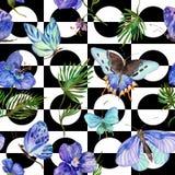 Wildes Insekt des exotischen Schmetterlinges und tropisches Blattmuster in einer Aquarellart stock abbildung