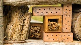 Wildes Insektenhotel ausführlich Stockfoto
