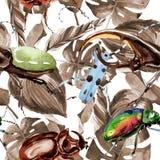 Wildes Insektenmuster der exotischen Käfer in einer Aquarellart Lizenzfreies Stockfoto