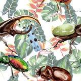 Wildes Insektenmuster der exotischen Käfer in einer Aquarellart Stockbilder