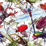 Wildes Insektenmuster der exotischen Käfer in einer Aquarellart Stockbild