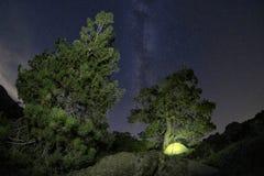 Wildes Lager unterhalb der Milchstraße stockfotos