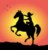 Wildes Pferd Lizenzfreie Stockbilder