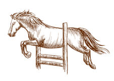 Wildes Pferd, das über Sperre springt Lizenzfreies Stockbild
