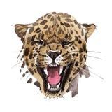 Wildes Tier des exotischen Leoparden in einer Aquarellart lokalisiert stock abbildung