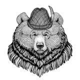 Wildes Tier des großen wilden Bären des Grizzlybären, das Tirol-Hut Oktoberfest-Herbstfestival Bier Fest-Illustration Bayern träg Stockbild
