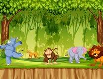 Wildes Tier im Wald lizenzfreie abbildung