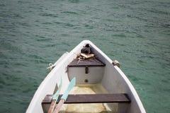 Wildes Vogelnest auf einem Boot Lizenzfreie Stockfotografie