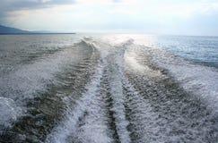 Wildes Wasser Stockfotografie