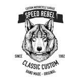 Wildes Wolf Vektorbild für Motorradt-shirt, Tätowierung, Motorradclub, Motorradlogo stock abbildung