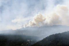 Wildfire! Stock Photo