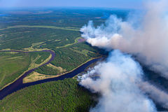 Wildfire. The View of wildfire of forest on height of the flight of the bird stock photo