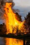 wildfire Стоковая Фотография RF