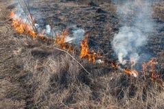 wildfire Imágenes de archivo libres de regalías