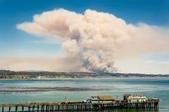 Wildfire Stock Afbeeldingen