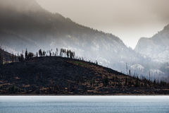 Wildfire aftermath Jackson Lake Grand Teton Stock Photo
