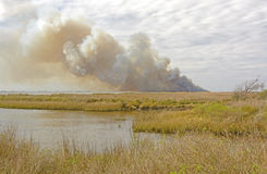 Wildfire in the Bayou Royalty Free Stock Photography