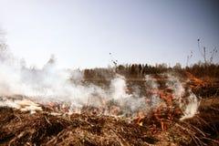 wildfire Brand Het globale verwarmen, milieucatastrofe Conce Stock Afbeeldingen