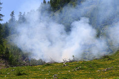 Wildfire in a mountain meadow Stock Images