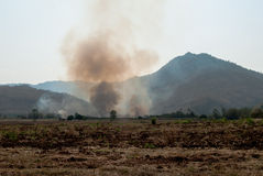 Wildfire - Burning forest ecosystem is destroyed. Thailand Stock Images
