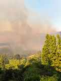 Wildfire burning out of control royalty free stock photos