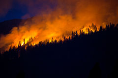 Wildfire with dark blue sky behind. A wildfire engulfs a dense, dry forest. This particular fire ended up at nearly 20,000 acres Stock Photo